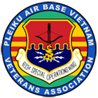 Pleiku airbase association logo